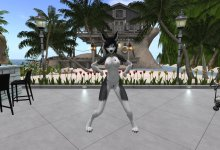 【Second Life】Furry Dance - Retry Rendezvous【R18】