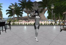 【Second Life】Furry Dance - Little Parade【R18】