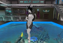 【Second Life】Furry Dance - Haagen-Dazs Ika no Sappuukei【R18】